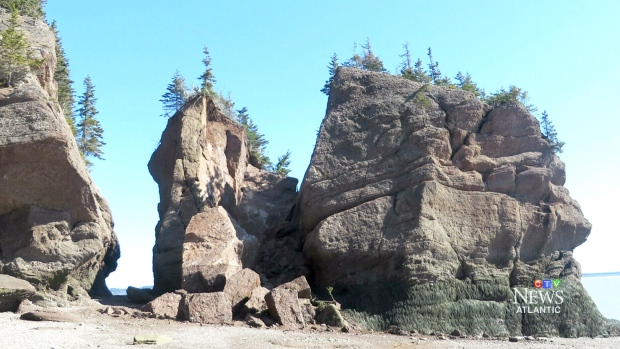 Iconic 39 elephant 39 formation among n b 39 s hopewell rocks for Landscaping rocks windsor ontario