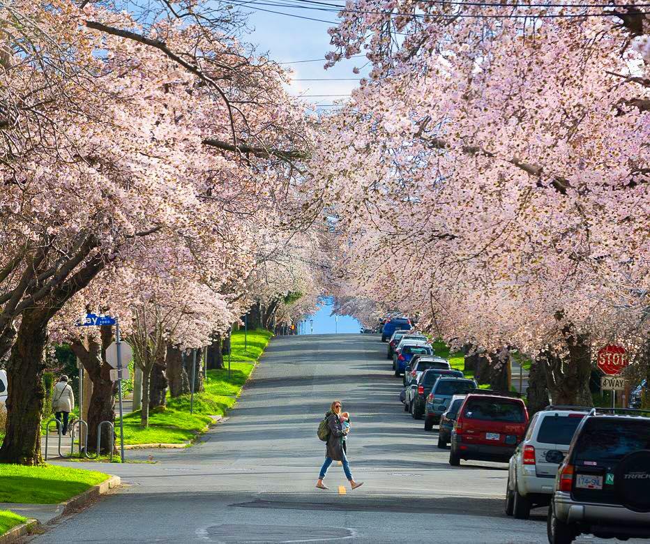 Spring Break  Vancouver Island
