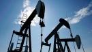 Pumpjacks at work pumping crude oil near Halkirk, Alta., June 20, 2007. (Larry MacDougal / The Canadian Press)