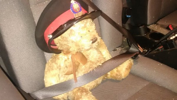'Constable in Training PC Bear' goes for a ride in Const. Clint Stibbe's police cruiser on Wednesday, March 16, 2016. (@TrafficServices / Twitter)