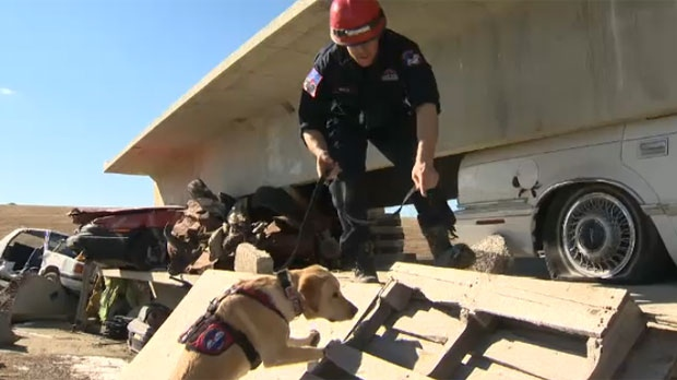 Calgary trains and deploys highly trained rescue dogs to save victims of disasters.