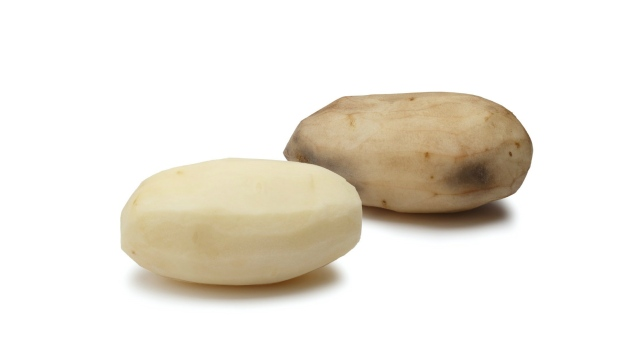 Genetically engineered potato