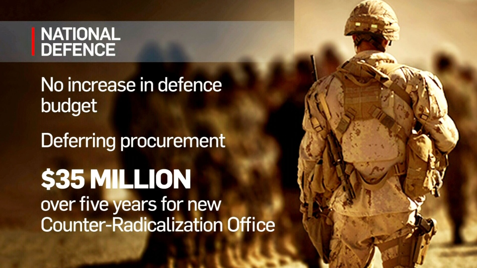 Budget 2016: Military purchases postponed
