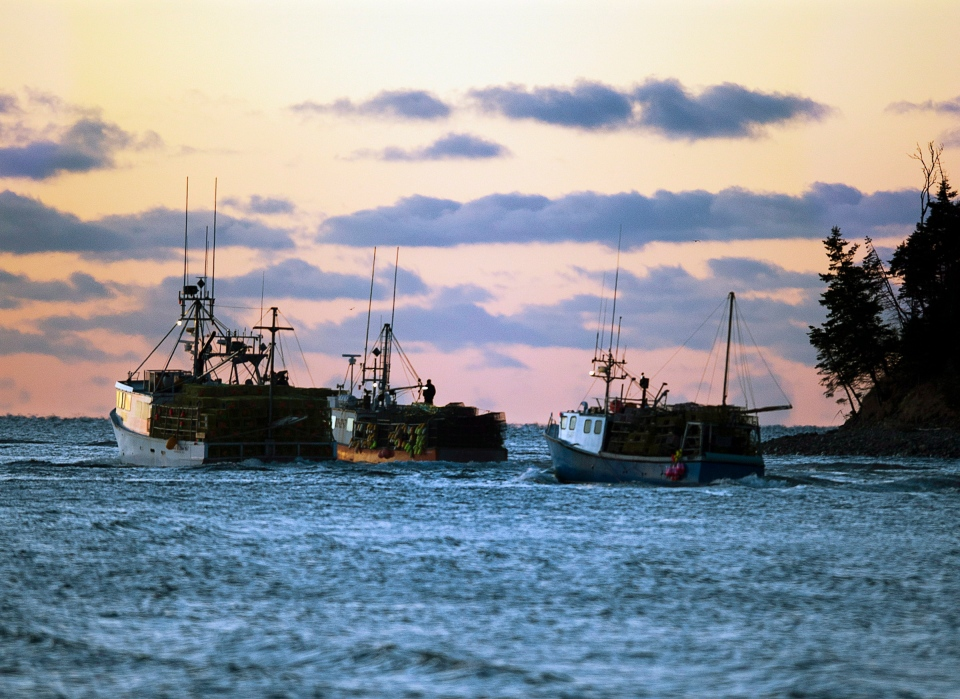 Fishing boats loaded with lobster traps head from Eastern Passage, N.S. on Tuesday, November 27, 2012 as the lobster season in southwestern Nova Scotia gets underway. (Andrew Vaughan / The Canadian Press)