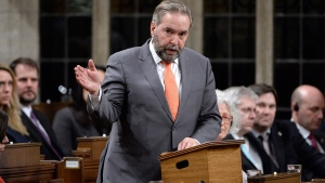 NDP Leader Tom Mulcair says the government should call a public inquiry after it was revealed Mounties monitored two journalists in 2007.