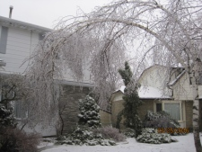 spring storm in Ontario