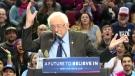 Extended: Bird flies to Sanders' lectern