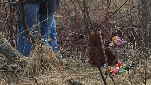 A teddy bear, stuffed animals and other toys were placed near the creek where Chase was found.