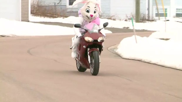 Stephane Comtois rides down a road in Dieppe, N.B. in his Easter Bunny costume.