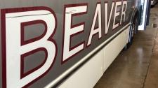 Beaver Bus Lines