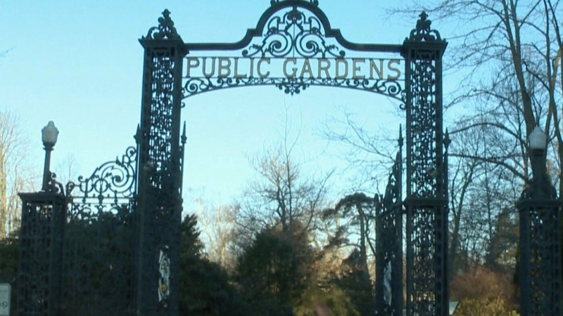 CTV Atlantic: Sign of spring: Public Gardens open