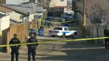 Calgary police block off an alley in Harvest Hills on April 7, 2016 following the discovery of a body