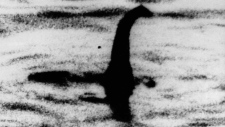 This is an undated file photo of a shadowy shape that some people say is a photo of the Loch Ness monster in Scotland. (AP Photo, File)