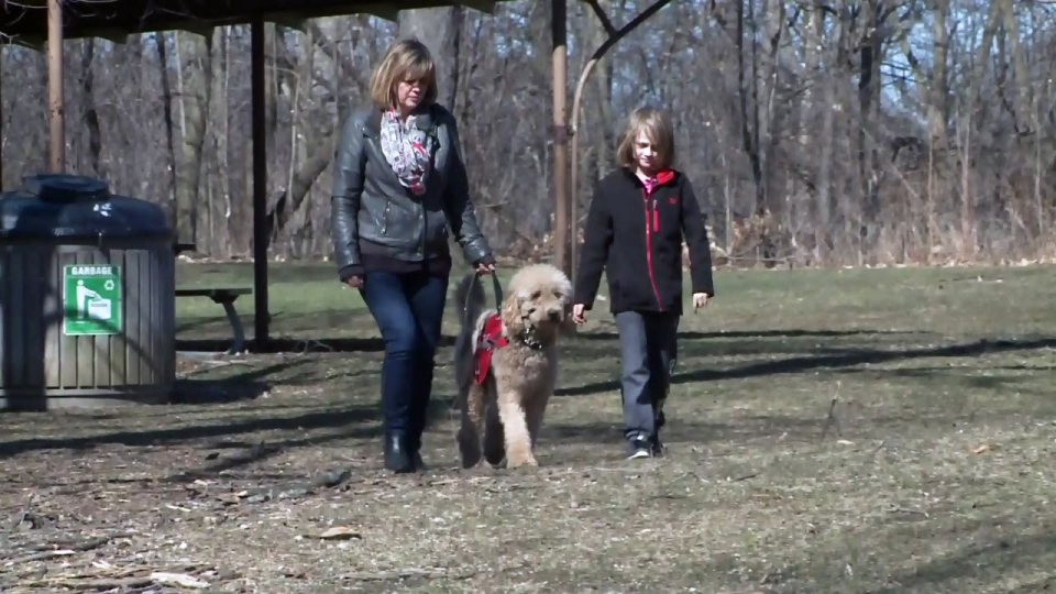 Donna Baldwin, her son Jack and service dog Jensen walk through a park on Thursday, April 14, 2016.