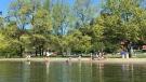 Elk Lake Park in Saanich is shown on April 9. (Astrid Braunschmidt/CTV Vancouver Island)