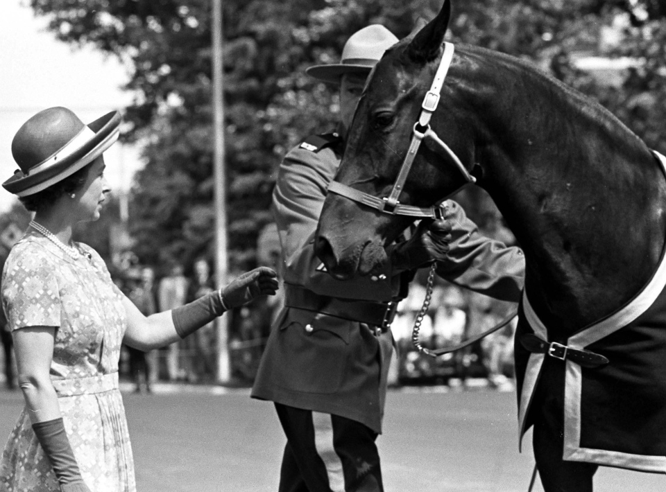 In this file photo, Queen Elizabeth II accepts a gift of one of the RCMP's horses during a visit to the RCMP Training Depot at Regina, SK., July 4, 1973. (CP)