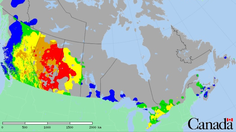 Forest Fire Danger Map Canada Fire risk already 'extreme' in parts of Prairies | CTV News
