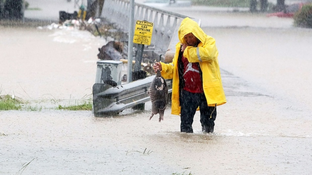 As Greens Bayou starts to crest its banks, a man rescues an armadillo from flood waters in Houston, Texas, Monday, April 18, 2016. Storms have dumped more than a foot of rain in the Houston area, flooding dozens of neighborhoods and forcing the closure of city offices and the suspension of public transit. (Steve Gonzales/Houston Chronicle via AP)