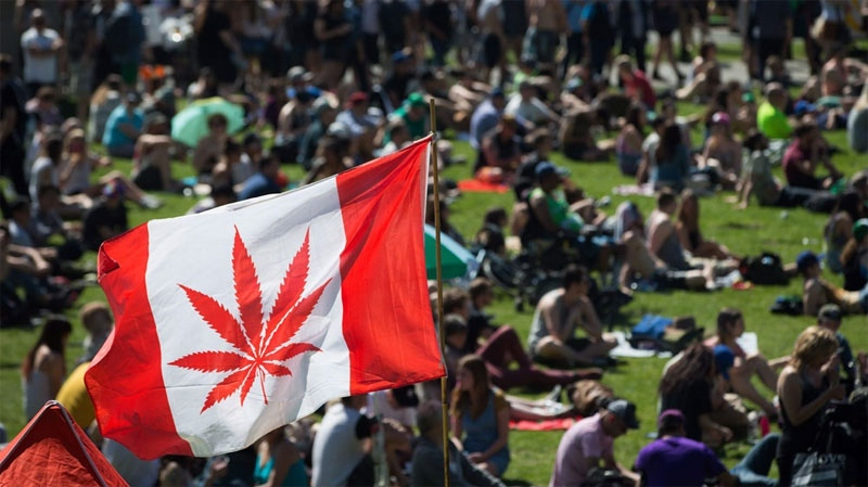 A marijuana flag flaps in the wind above the crowd at the annual 4/20 cannabis culture celebration at Sunset Beach in Vancouver, B.C. on April 20, 2016. (Darryl Dyck / The Canadian Press)