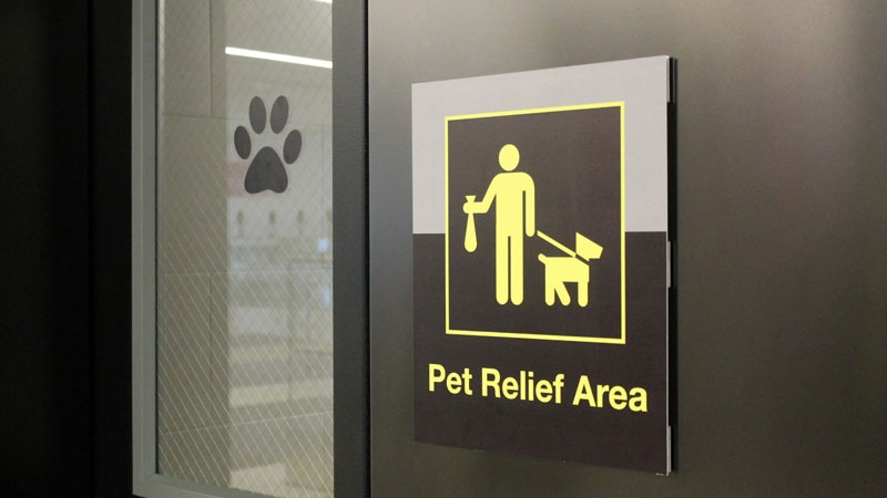 New York Prime >> Dogs getting airport bathrooms of their own | Lifestyle ...