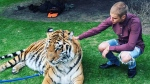 Justin Bieber poses with a tiger in this photo posted to his Instagram accounton May 1, 2016. (justinbieber /Instagram)