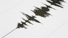 quake generic