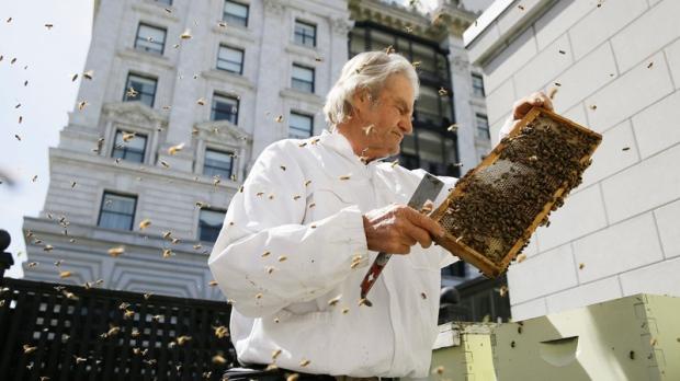 Beekeeper Spencer Marshall