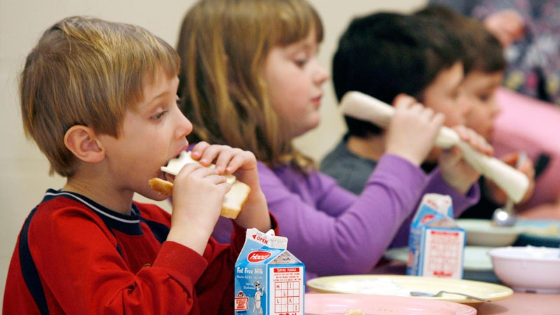Kids eating lunch and milk diet