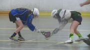 Lacrosse growing in popularity for Windsor girls