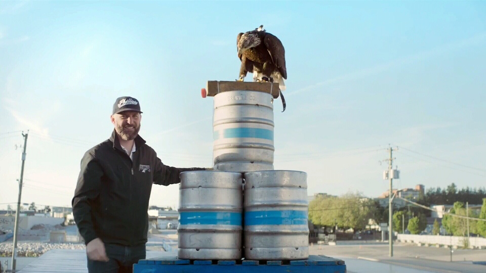 Phillips founding brewer Matt Phillips poses on a pile of kegs with 'Hercules,' a four-year-old bald eagle involved in a promotional contest that will see the bird deliver a can of beer directly to the winner. (PhillipsBeer.com)