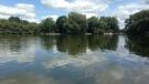 The Avon River flows through Stratford on Thursday, Aug. 6, 2015. (Dan Lauckner / CTV Kitchener)
