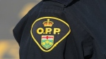 File photo of an Ontario Provincial Police officer. (Lars Hagberg/The Canadian Press)