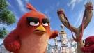 Red, voiced by Jason Sudeikis, appears in a scene from 'The Angry Birds Movie.' (Sony)