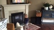 Jeff's Video: Missy has company watching Canada AM