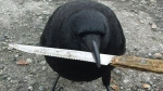 Canuck the Crow, seen in this undated handout photo from the bird's Facebook page, is holding a kitchen knife. (Facebook, The Crow and I / THE CANADIAN PRESS)