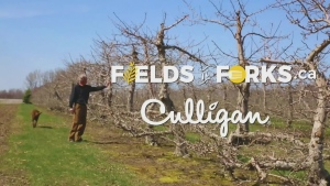 Fields to Forks: Culligan
