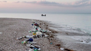 Marine debris and plastic pollution are shown along the coastline of Haiti in a handout photo. (THE CANADIAN PRESS / ho-Timothy Townsend)