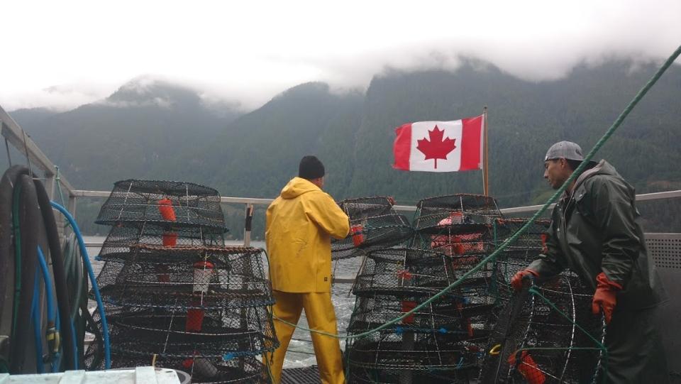 Spot prawns shipped overseas