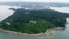 Stanley Park is seen from the air in this undated photo taken by CTV's Pete Cline in Chopper 9.