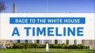 U.S. presidential election: A 30-second timeline