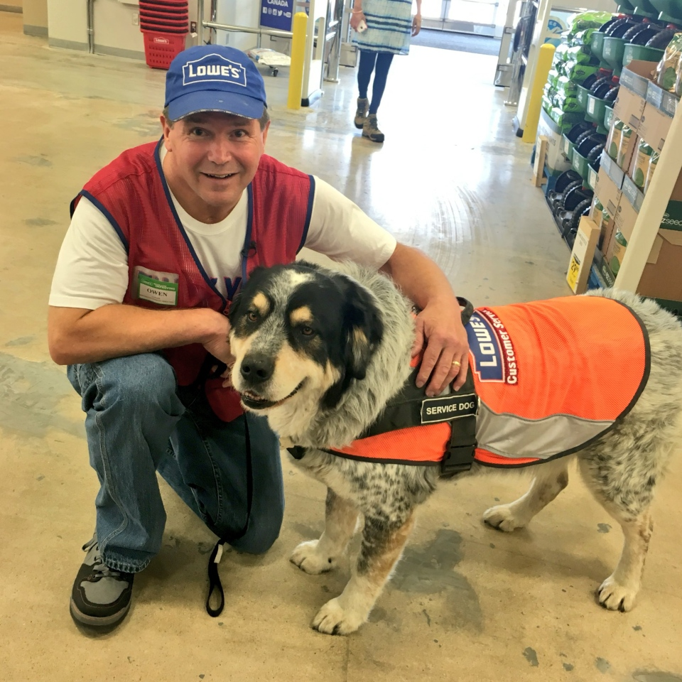 Owen Lima and his service dog Blue are the newest employees at the Lowe's home improvement store in north Regina. (CTV REGINA / Jessie Anton)