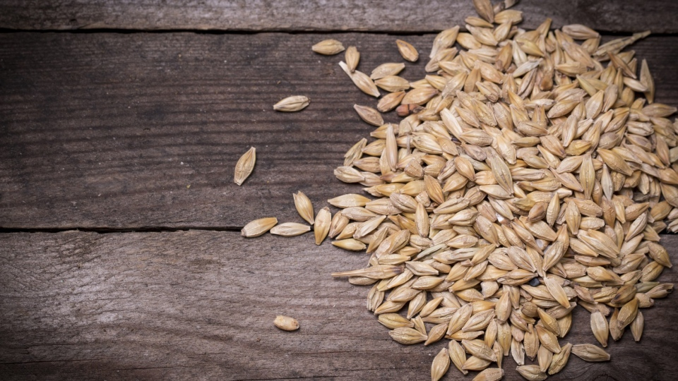 A new Canadian study reports that barley reduces two types of 'bad' cholesterol – LDL and non-HDL – by 7 per cent. (id-art / Istock.com)