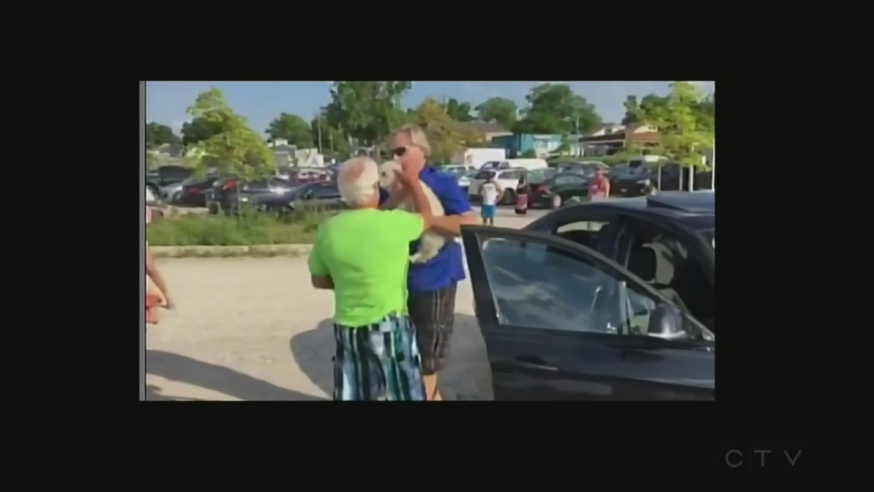 Man rescues dog from car in Grand Bend