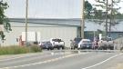 CTV Kitchener: Serious crash outside Elmira