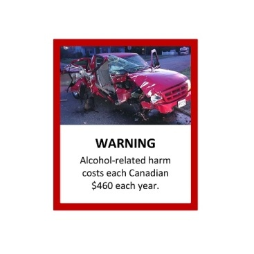 An alcohol warning label used in an online survey conducted by Public Health Ontario is shown. (Public Health Ontario)