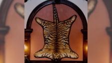 Tiger pelt stolen