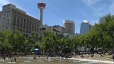 Calgary's city council, 2026 Winter Olympics, wina