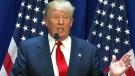 CTV National News: Trump's financial skills