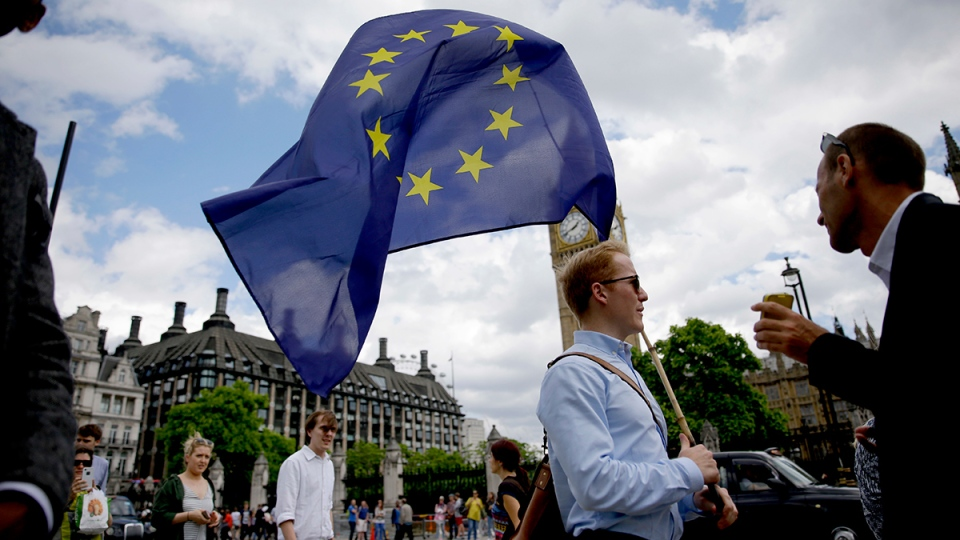 A remain supporter stops to talk to people as he walks around with his European flag across the street from the Houses of Parliament in London, Friday, June 24, 2016. (AP / Matt Dunham)