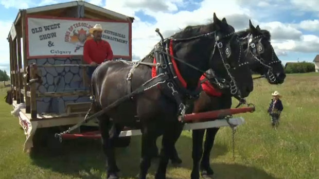 Safety Paramount As Handlers Prepare Horses For Calgary